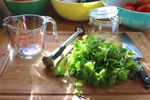 приготовление масла орегано