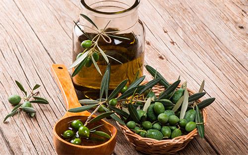 maslo-olivki-vetochki-listiki
