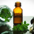 лекарство из растений